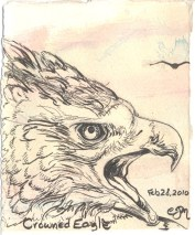 2010-2-28-crowned-eagle