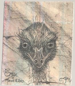 2010.3.18.Emu