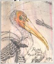 2010.3.19.Painted.Stork