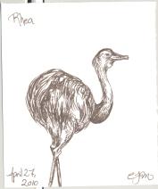 2010.4.27.Rhea