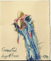 2010.8.7 Guinea Fowl