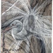 2010.6.27 Great Egret