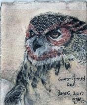 YEAR OF BIRDS