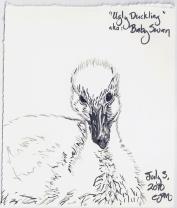 2010.7.3 Ugly Duckling AKA Baby Swan